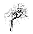 Hand drawn tree silhouette vector image