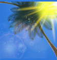 blue sky with summer sun burst background vector image