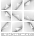 Set of curled corners vector image vector image