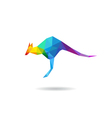 Kangaroo abstract isolated vector image