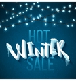 Hot winter sale vector image