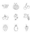 plant berries icon set outline style vector image
