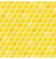 Seamless Pattern with Honeycombs vector image