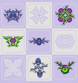 set of a thistle flowers and celtic knots vector image