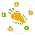 The logo or icon vitamins carrots vector image