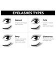 Beautiful girl eyelashes female makeup vector image