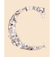 C School alphabet letter vector image