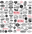 Set of vintage bagdes labels and stamps vector image