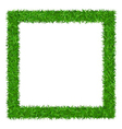 Green grass Square frame with copy-space 1 vector image vector image