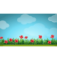 Scene with red flowers in the field vector image vector image