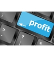 Profit key showing returns for internet businesses vector image