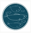 Funny fishes in circle shape on a dark background vector image
