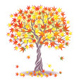 maple tree vector image vector image