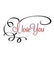 I Love You header with calligraphic elements vector image