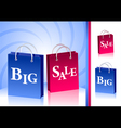 Concept Big Sale and isolate two packages vector image vector image