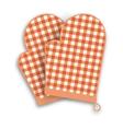 Red kitchen gloves vector image