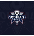 Football logo for the team and the cup vector image