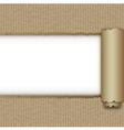 Torn brown paper box vector image