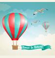 air balloon and birds vector image