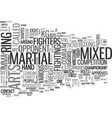 what is mixed martial arts text word cloud concept vector image