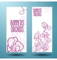 Orchids on the banner for design vector image