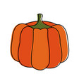 pumpkin fruit icon image vector image