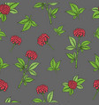 seamless pattern with ginseng plant vector image