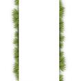 Fir Twig Banner vector image vector image