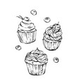 hand drawn graphic sweet food design vector image