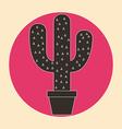 cactus design vector image