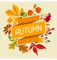 Card with autumn leaves and plants Design for vector image