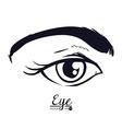 eye woman vector image