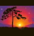 Pine Tree Against a Colorful Sunset vector image