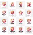Tiger and lions face logo badge vector image