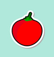 tomato sticker on blue background colorful vector image