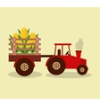 tractor farm with vegetables vector image