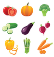 fresh shiny vegetables - icons set vector image vector image