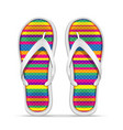 beach slippers stock vector image