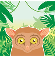 Tarsier on the Jungle Background vector image