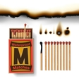 Matchbox and matches vector image vector image