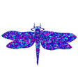 decorative beautiful graceful dragonfly vector image