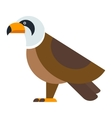 Eagle raptor wildlife bird vector image