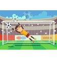 Soccer football goalkeeper catching ball in goal vector image