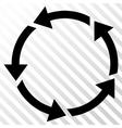Rotation Icon vector image