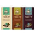 Set of label for chocolate with fruits of cocoa vector image