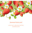 Summer strawberries blossom flowers fruits card vector image