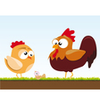 a chicken and a rooster vector image