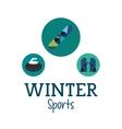 Snowboard and winter sport icon set design vector image