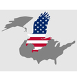 American bold eagle vector image