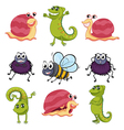 Animals and insects vector image vector image